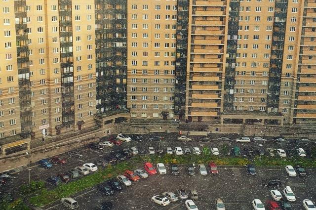В Петербурге выпал первый снег.
