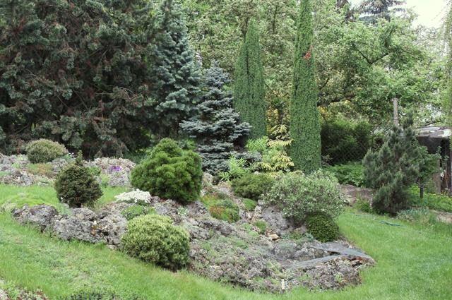 Камни имини-хвойные– визитная карточка чешских садов!