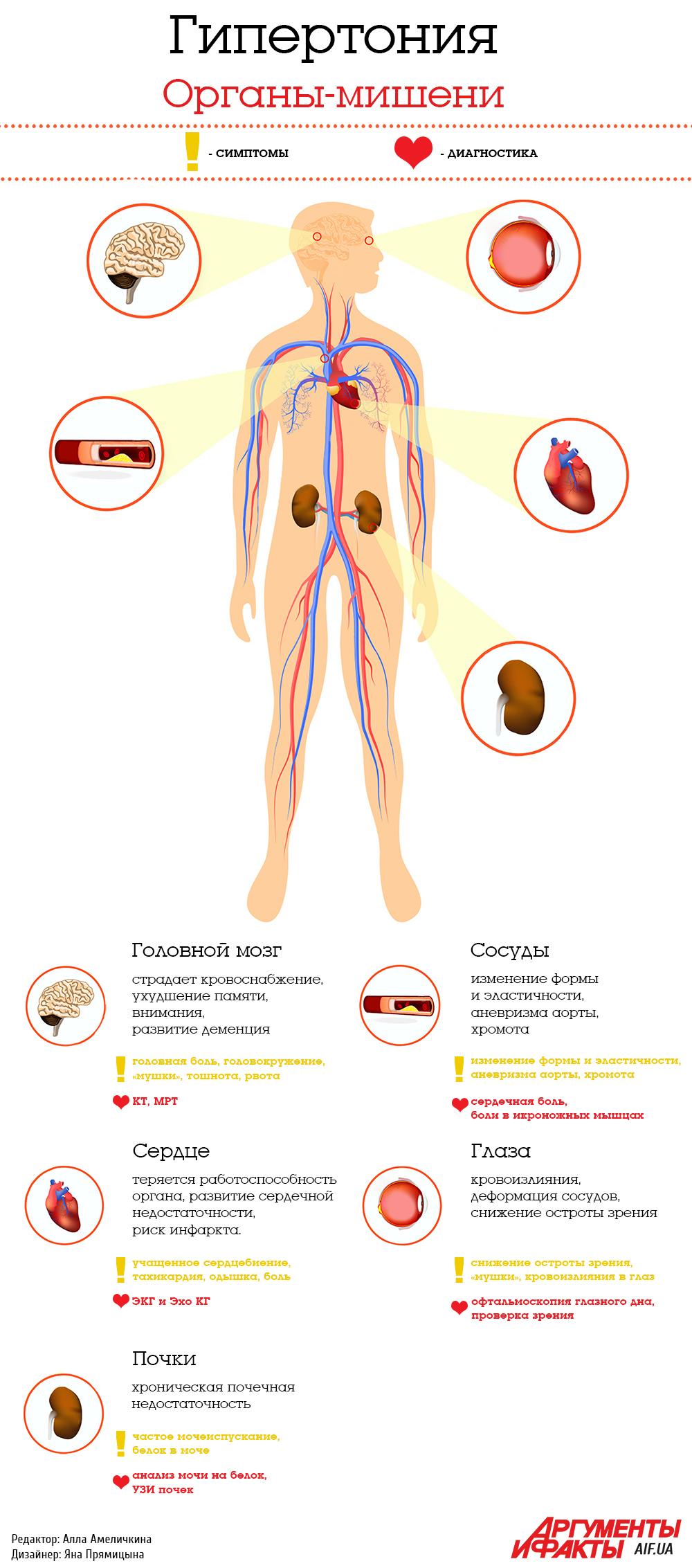 Органы мишени при артериальной гипертензии - Здоровое Давление