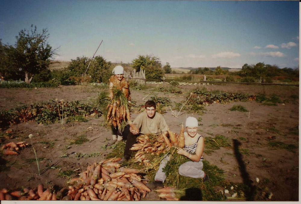 Морковь уродилась гиганской