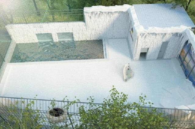 Вольер белого медведя откроют в середине октября.