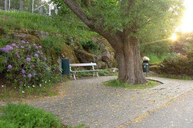 Парк имени Ленина в Хельсинки