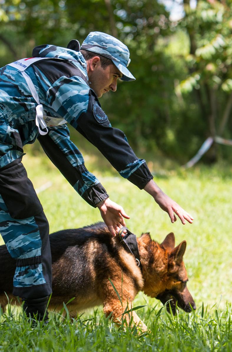 Александр Вычужанин со своей собакой на соревнованиях.