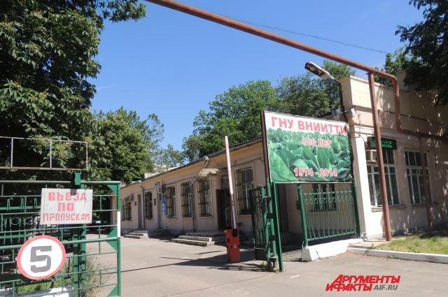 Институту Табака в Краснодаре в прошлом году исполнилось 100 лет