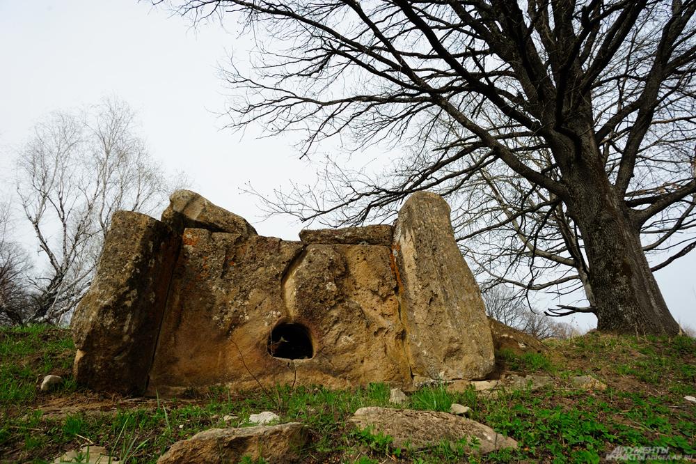 Богатырская поляна, Адыгея, дольмены в Адыгее