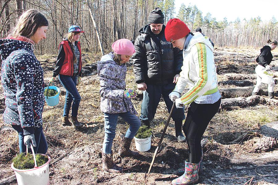 Учащиеся школьного лесничества - постоянные и самые надёжные помощники.