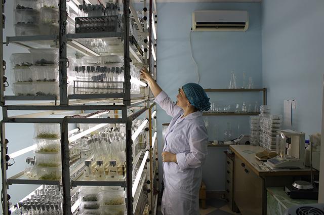 Лаборатория Ботанический сад
