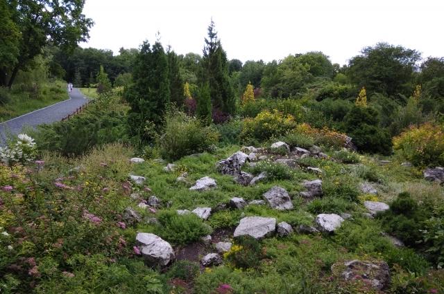 В Самарском Ботаническом саду действует правило- не сходить с дорожек. В следующем сезоне он станет доступнее для посетителей, потому что таких дорожек станет больше.
