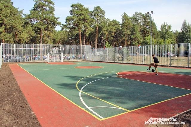 Любители баскетбола смогут позаниматься спортом посреди леса.