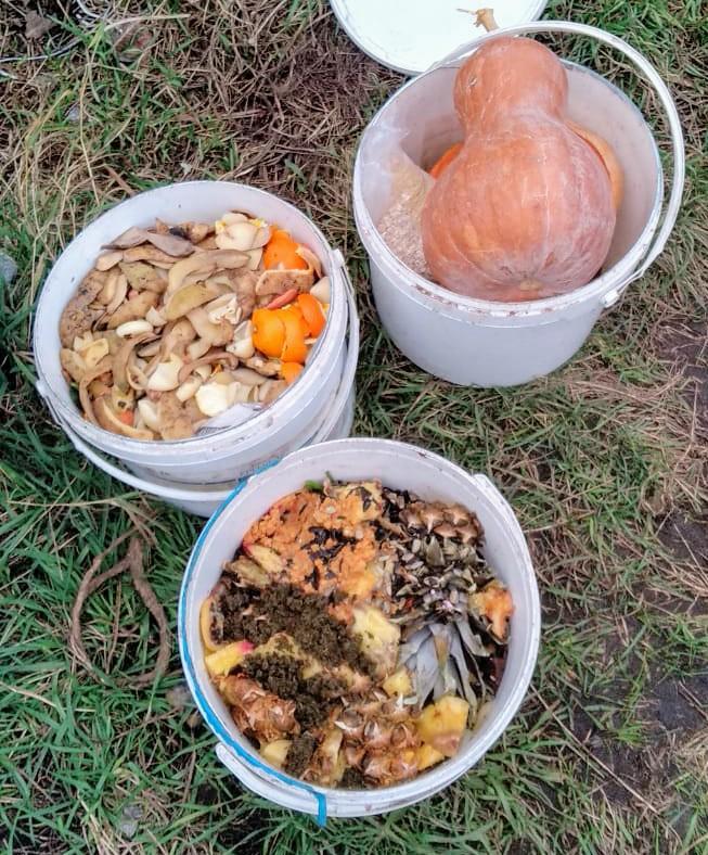 Компостирование органических отходов