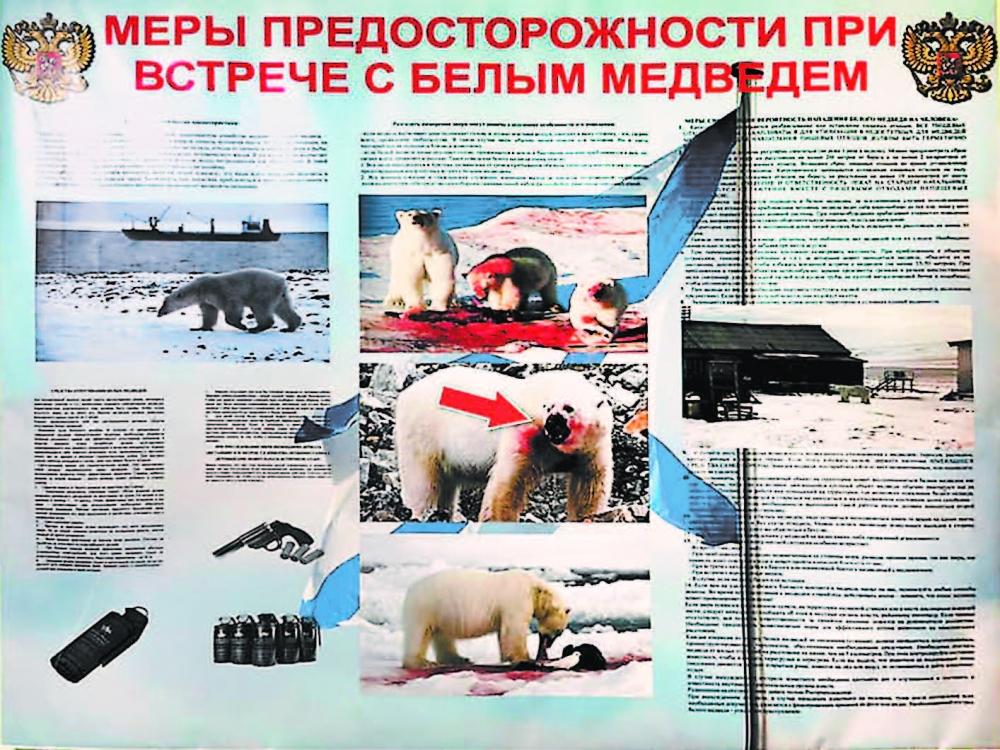 Плакат на стене военной базы «Северный клевер».