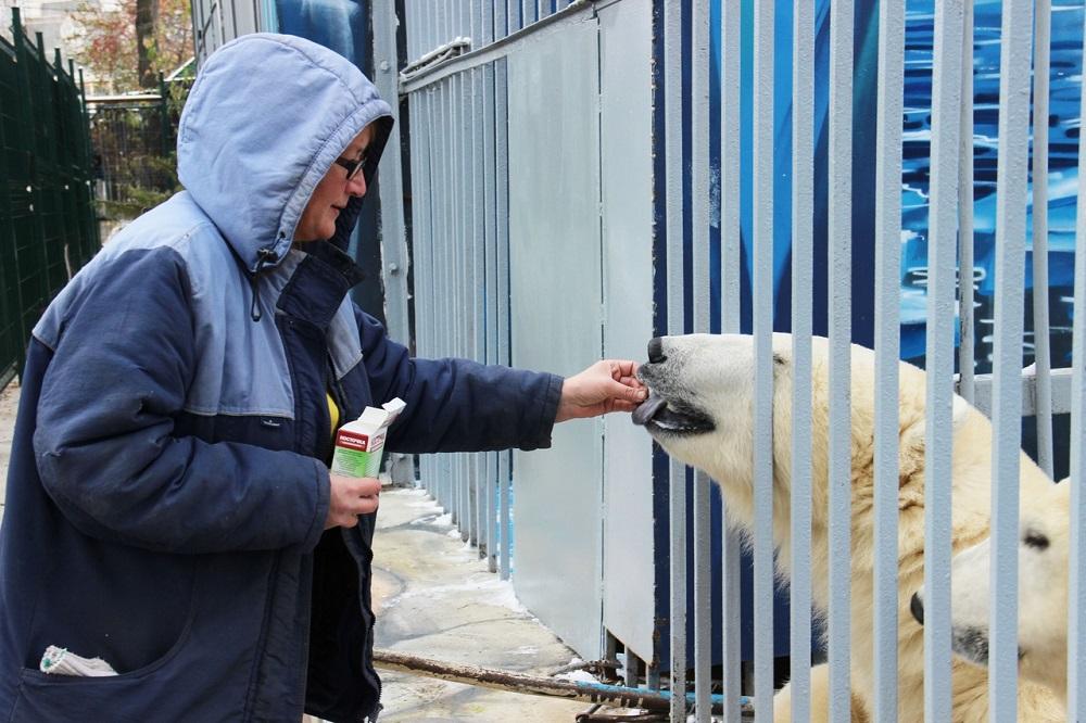 Сотрудники Пермского зоопарка