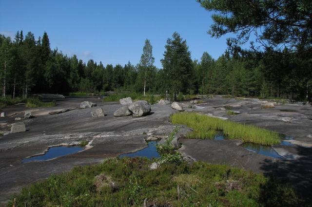 Залавруга на берегу пересохшего протока реки Выг.