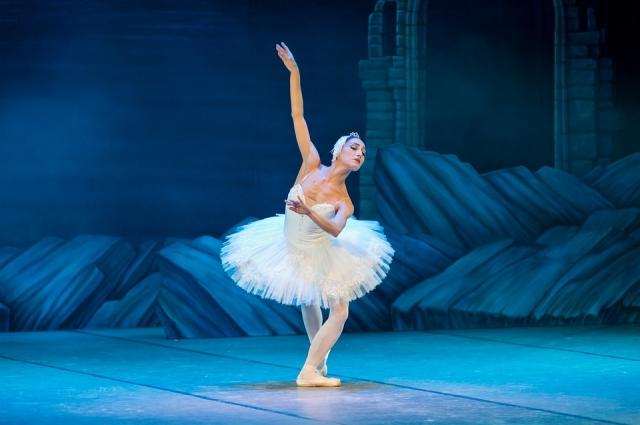 Танцевать «Лебединое озеро», конечно, не научат, но несколько балетных движений покажут.