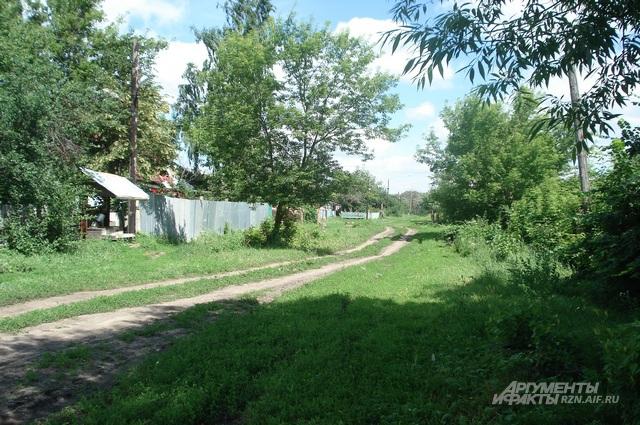 Деревня Софиевка Милославского района летом. Именно на этой улице и произошло жуткое преступление.