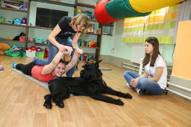 Собаки в центре зоотерапии очень послушны и доброжелательны.