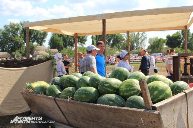 Казачьим обществам помогут с землей для ведения фермерского хозяйства.