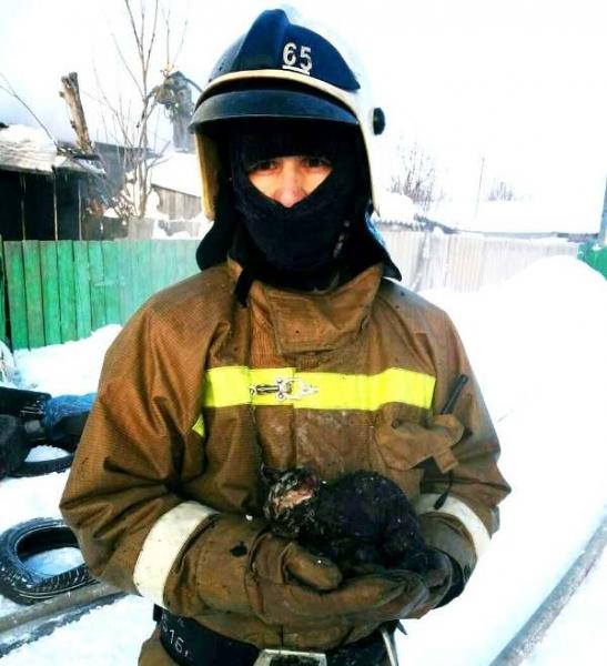 Спасли котёнка от пожара