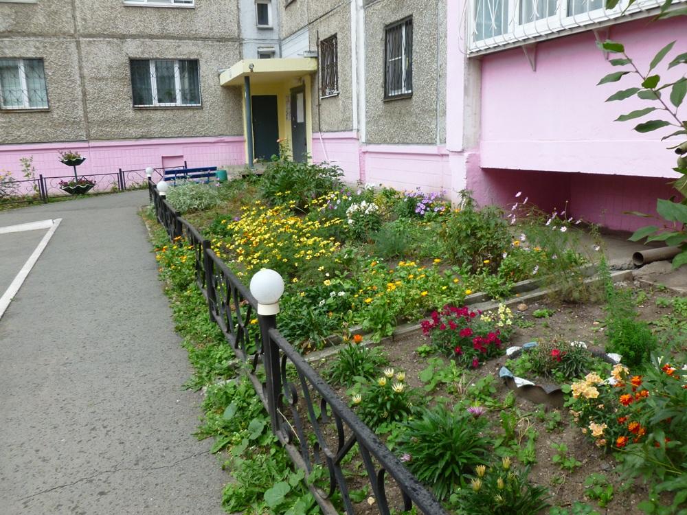 Во дворе дома ТСЖ «Медик» - чистота и зелень.