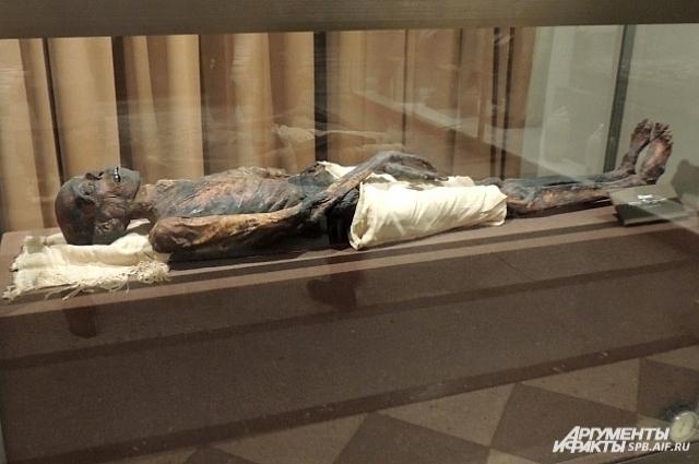 До исследования считалось, что это останки певицы Бабат, но результаты показали, что при жизни, то есть 2,5 тысячелетия назад, экспонат был мужчиной.