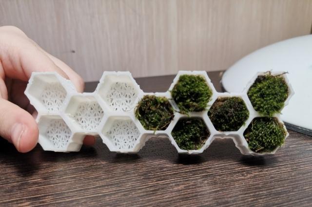 Антивандальная строительно-декоративная панель BeeBlocks.