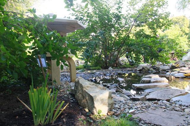 Японский садик в Ботаническом саду Пензы