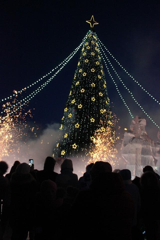 Огни на новогодней елке зажглись.