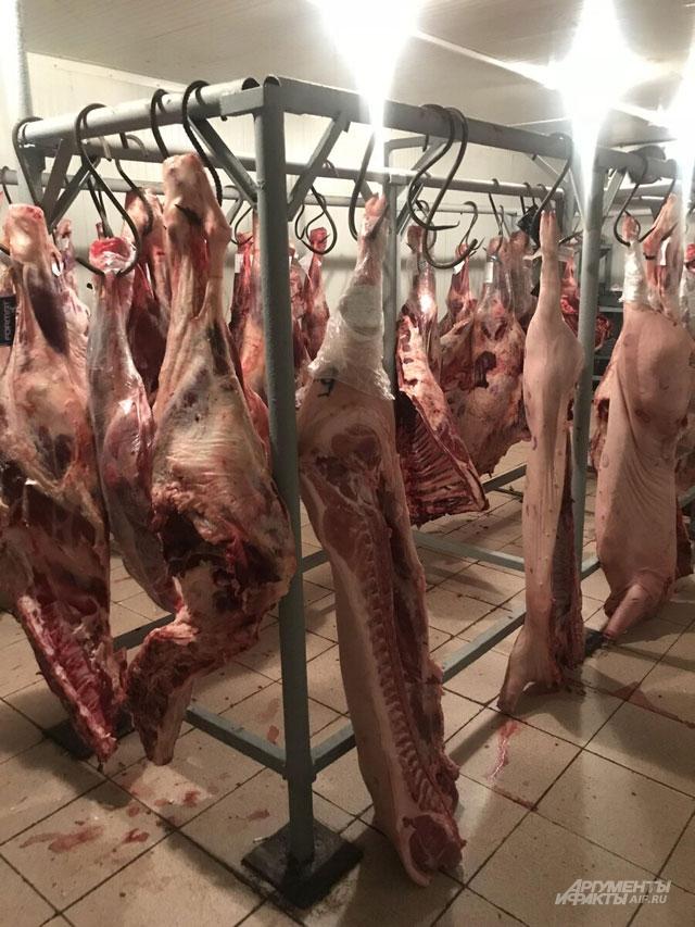 Мясо с пола отправится в утилизацию.