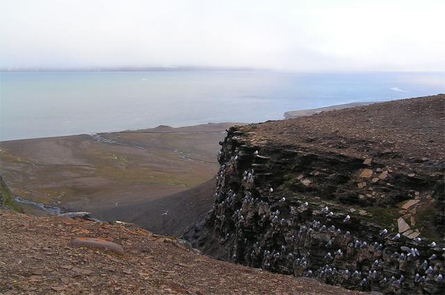 Пролив Фреманнсундет между островами Эдж и Баренца.