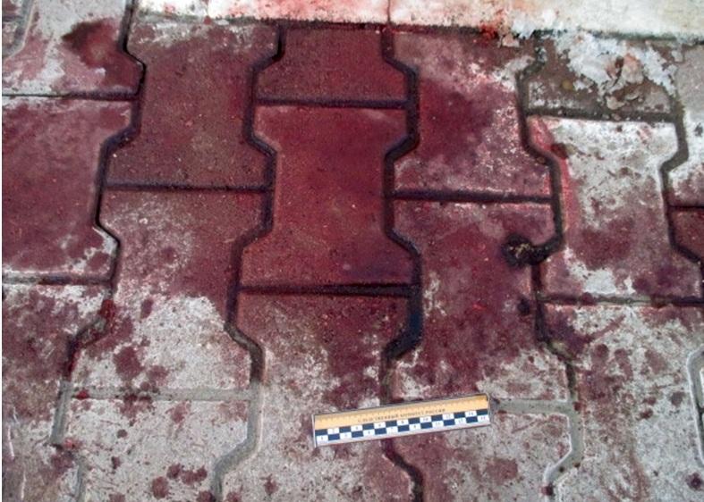 Следы крови у дома Александра Заварзина по улице Сенной.