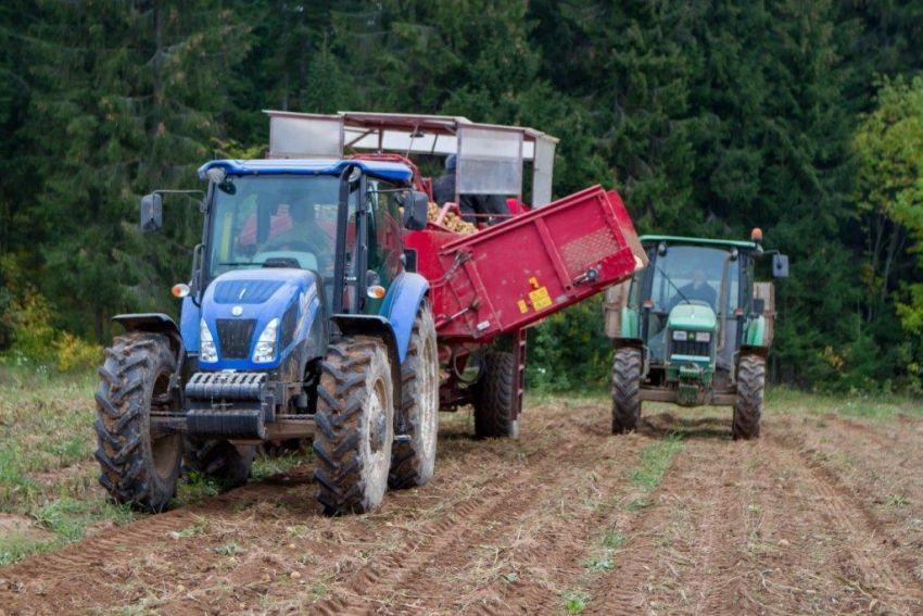 Трактор в хозяйстве появился только через два года.