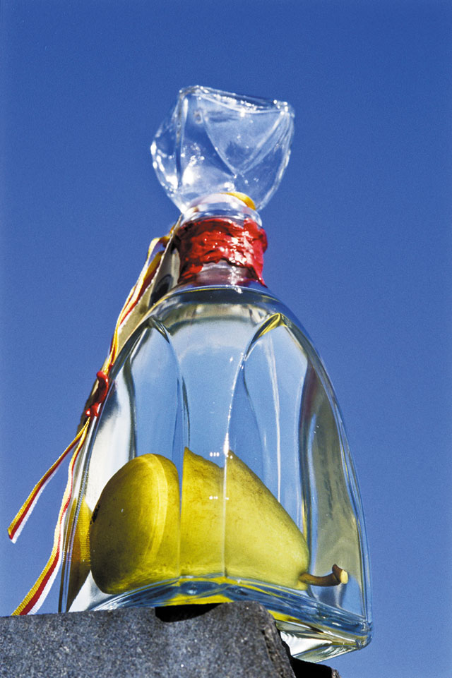 Плод в бутылке