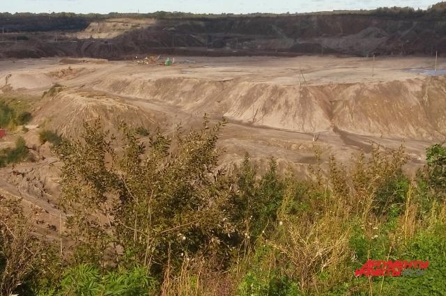 В поисках янтаря на карьере вынимают тонны грунта