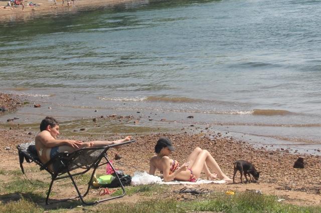 Мы на пляже загораем, и собачка - тоже.