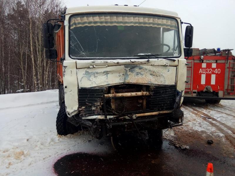 Водитель грузового автомобиля не пострадал.