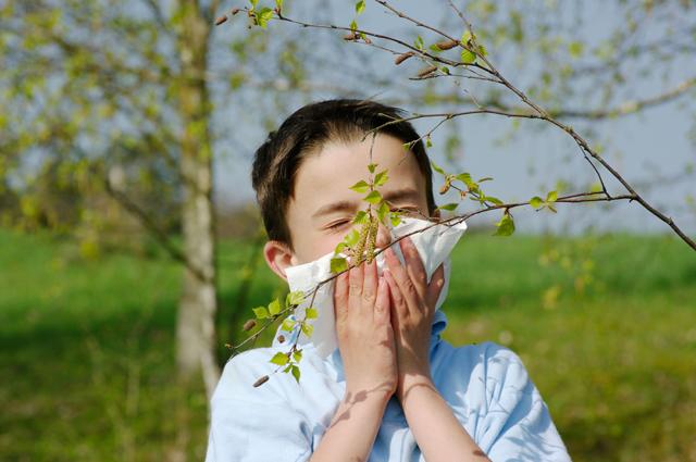 Аллергия, поллиноз, ребенок