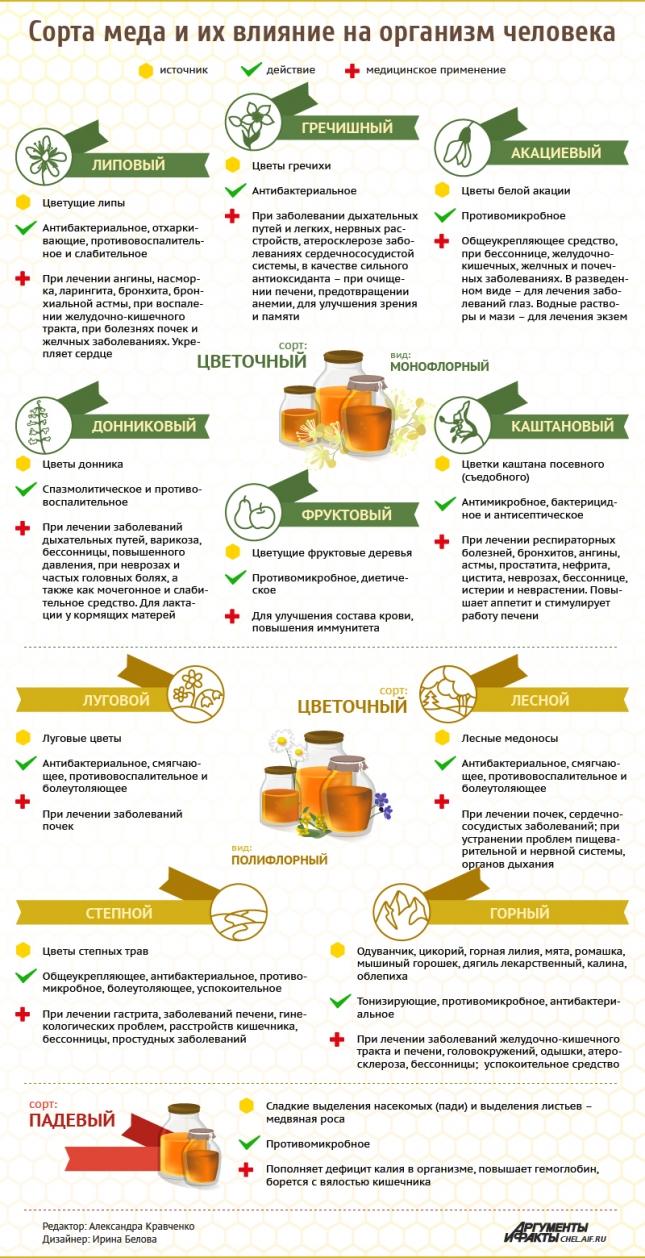 Сорта мёда и его лечебные свойства. Инфографика
