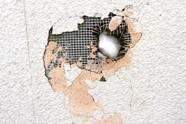 Школьники снежком почти пробили стену дома.