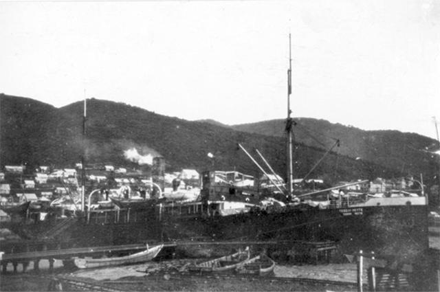 Грузопассажирский пароход «Теодор Нетте» («Тверь»)