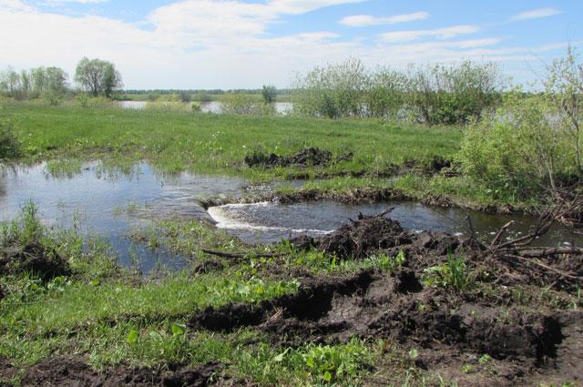 В половодье новое русло реки Хорошенькой отрезало от цивилизации целое село.