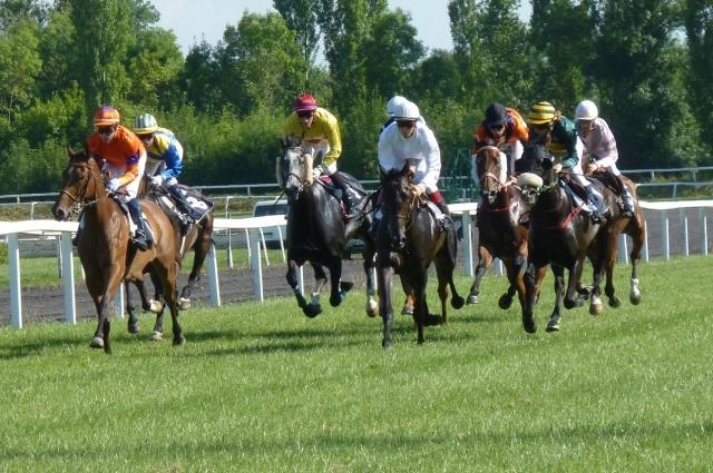 На ипподроме регулярно проводятся конные соревнования.