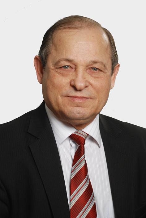 Доктор технических наук, профессор Павел Михеев