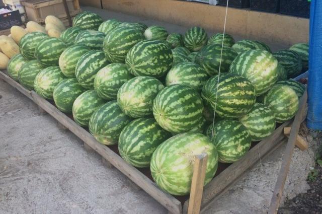 Фрукты и ягоды, которые продают на обочинах, впитывают все вредные вещества и выхлопные газы.