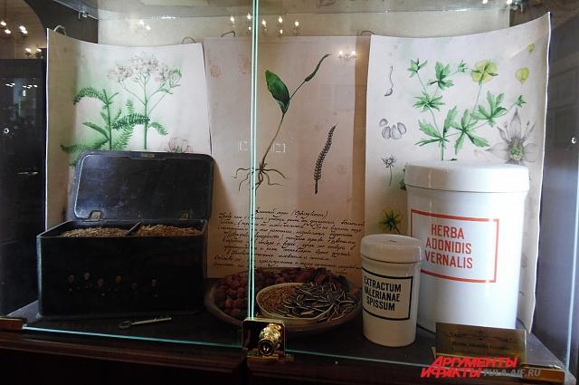 Китайский чай стали заваривать в России не так давно.