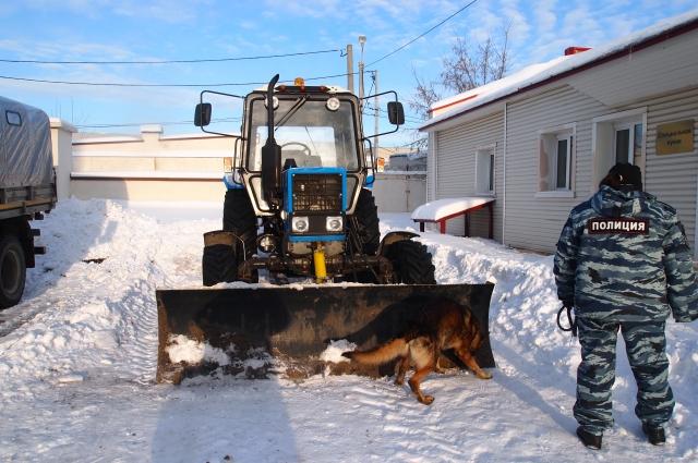 Со служебными собаками регулярно проводят тренировки