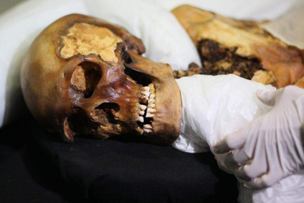 Принцесса Укока найдена в ходе раскопок в 1993 г. Захоронение сделано в V-III вв. до н. э