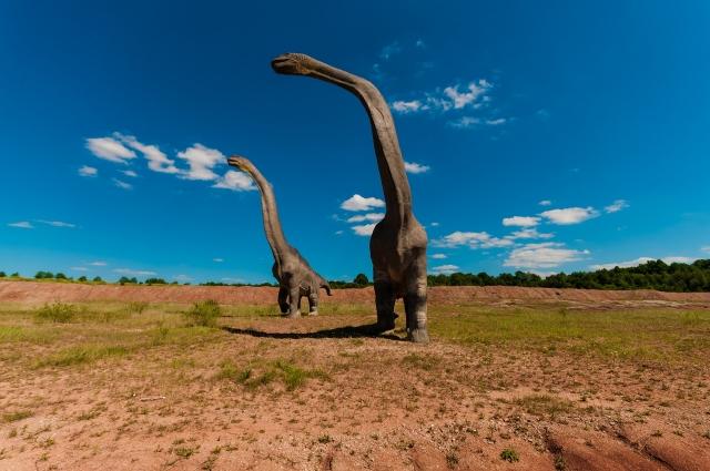 Такие гиганты могли водиться на Шестаковском болоте соти миллионов лет назад.