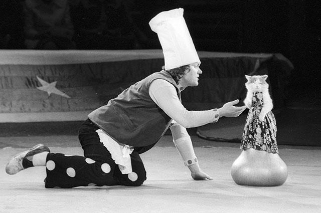 Юрий Куклачев с дрессированной кошкой на арене цирка, 1976 г.