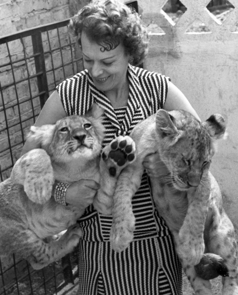 Советская артистка цирка, дрессировщица львов Ирина Николаевна Бугримова. 1964 год.