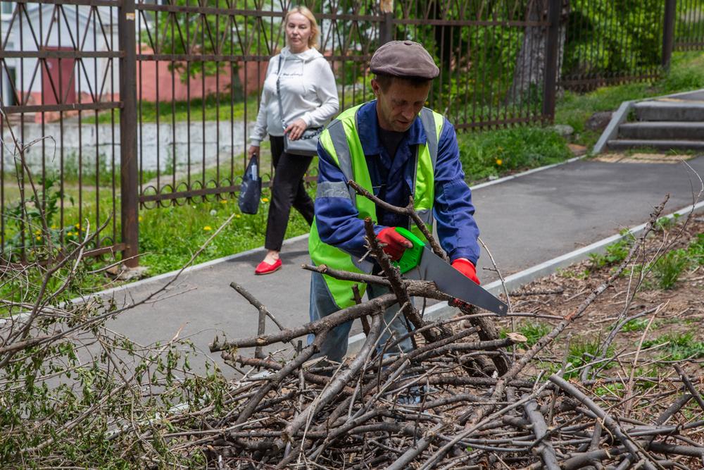 До половины деревьев Владивостока пострадали от непогоды.